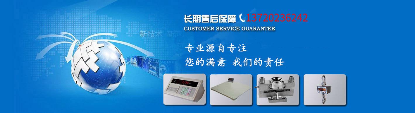 武汉电子地磅